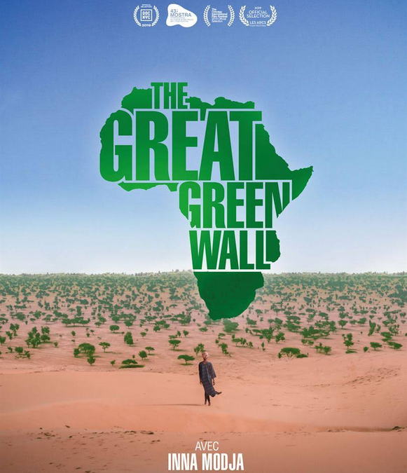 "Inna Modja, artiste engagée pour ""The great green wall"""