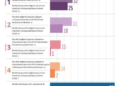 Infographie 1